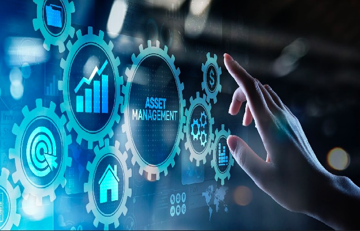 Manage Your Company's Digital Assets
